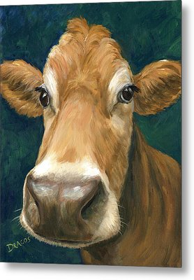 Guernsey Cow On Teal Metal Print by Dottie Dracos