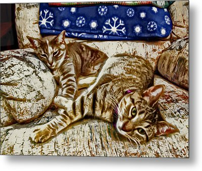 Happy Together Metal Print by David G Paul