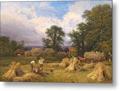 Harvest Time Metal Print by GV Cole