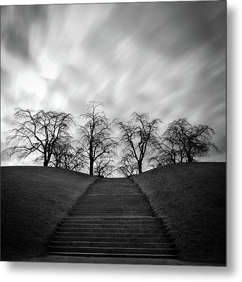 Hill, Stairs And Trees Metal Print by Peter Levi