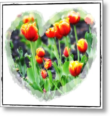 I Heart Tulips Metal Print by Bill Cannon
