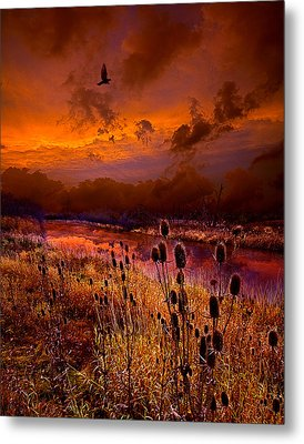 Intuition Metal Print by Phil Koch