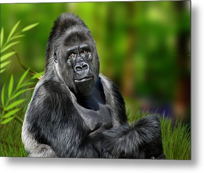 Jumbo Metal Print by Julie L Hoddinott