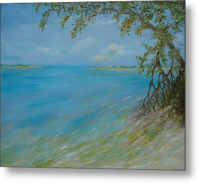 Key West Hanging Out Metal Print by Phyllis OShields