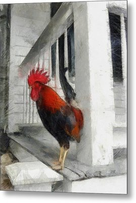 Key West Porch Rooster Metal Print by Michelle Calkins