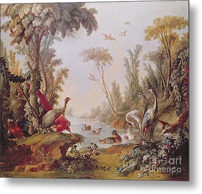 Lake With Geese Storks Parrots And Herons Metal Print by Francois Boucher