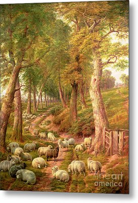 Landscape With Sheep Metal Print by Charles Joseph