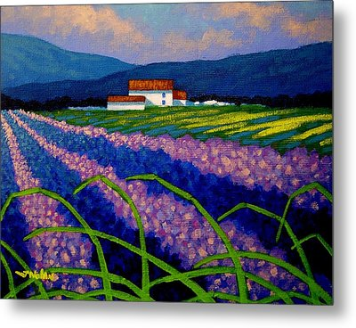 Lavender Field France Metal Print by John  Nolan