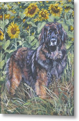 Leonberger In Sunflowers Metal Print by Lee Ann Shepard