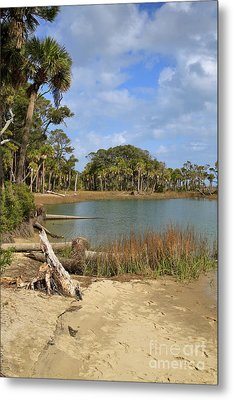 Lowcountry Lagoon Metal Print by Louise Heusinkveld