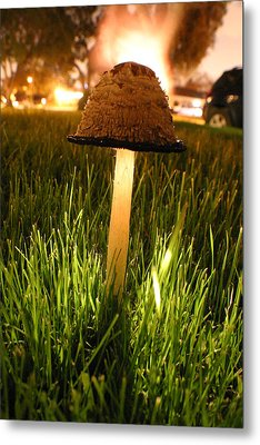 Magic Mushroom Metal Print by Jack Edjourian
