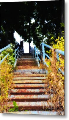 Manayunk Steps Metal Print by Bill Cannon