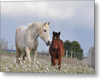 Mother And Son Metal Print by By Ana_gr