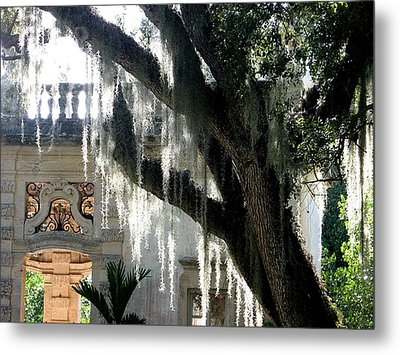 Old Tree With Hanging Thorns Metal Print by Mario Perez