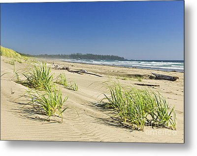 Pacific Ocean Shore On Vancouver Island Metal Print by Elena Elisseeva