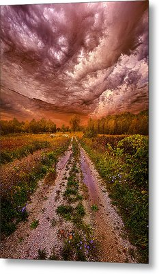 Passion Within Chaos Metal Print by Phil Koch