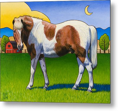 Patches Metal Print by Stacey Neumiller