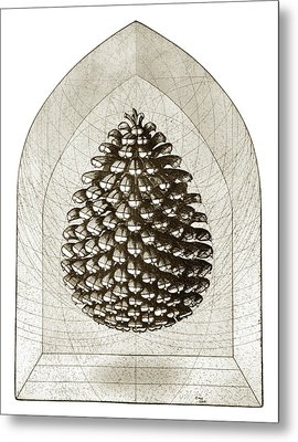 Pinecone Metal Print by Charles Harden