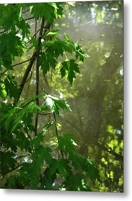 Pond Reflection 2 Metal Print by Janeen Wassink Searles