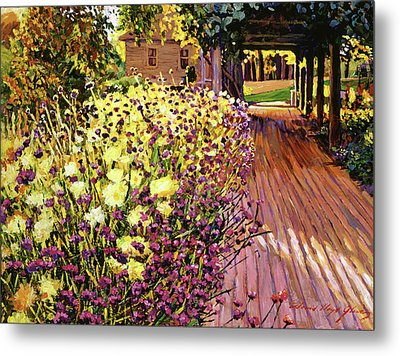 Purple And Gold Metal Print by David Lloyd Glover
