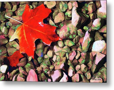 Red On The Rocks Metal Print by Jeff Kolker