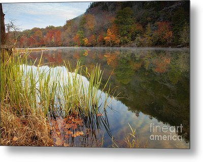 Reflection In The Fort River Metal Print by Iris Greenwell