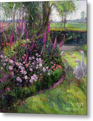 Rose Bed And Geese Metal Print by Timothy Easton