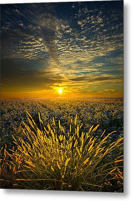 Rural Choir Metal Print by Phil Koch