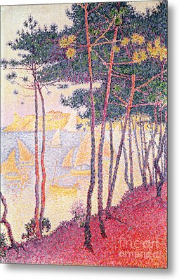 Sailing Boats And Pine Trees Metal Print by Paul Signac