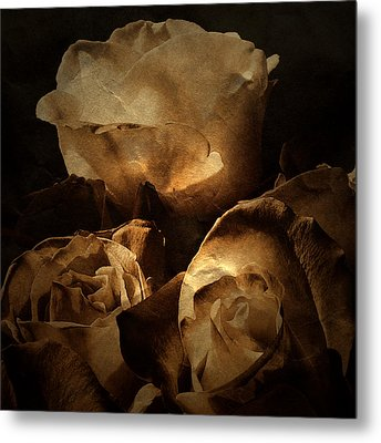 Scent Of A Memory Metal Print by Bonnie Bruno