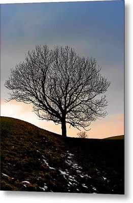 Silhouette Of A Tree On A Winter Day Metal Print by Christine Till