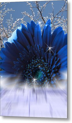 Spring Emergence  Metal Print by Cathy  Beharriell