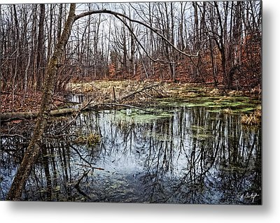 Spring Pond Metal Print by Phill Doherty