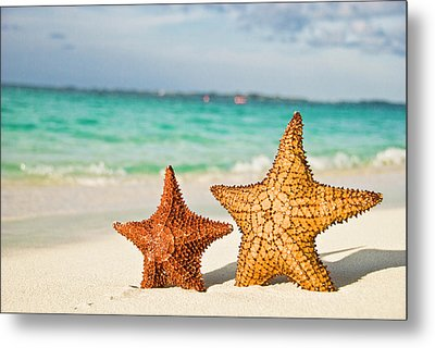 Starfish On Tropical Caribbean Beach Metal Print by Mehmed Zelkovic