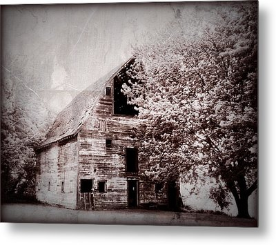Still Here Metal Print by Julie Hamilton