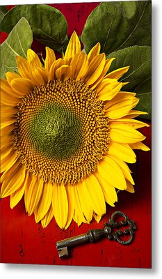 Sunflower With Old Key Metal Print by Garry Gay