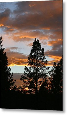 Sunset Silhouette Metal Print by Donald Tusa