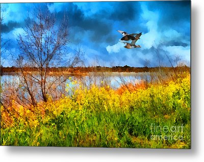 The Arrival Of Spring . 7d12643 Metal Print by Wingsdomain Art and Photography