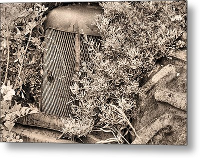 The Bigfoot Sighting Bw Metal Print by JC Findley