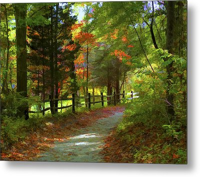 The Fence Metal Print by Jeff Breiman