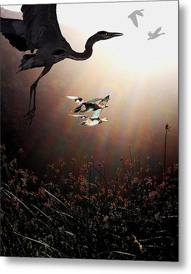 The Marsh Metal Print by Wingsdomain Art and Photography