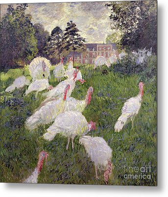 The Turkeys At The Chateau De Rottembourg Metal Print by Claude Monet