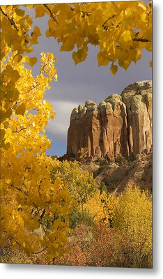 The Yellow Leaves Of Fall Frame A Rock Metal Print by Ralph Lee Hopkins