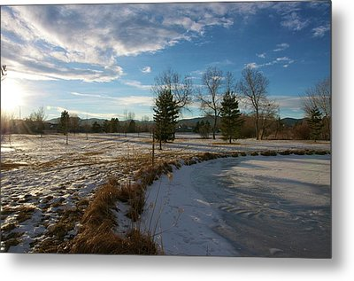 Troutman Park Metal Print by Christopher Wood