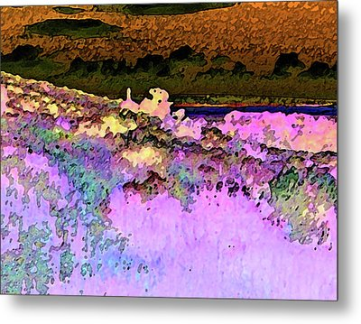 View From The Cabin Window 3 Metal Print by Lenore Senior