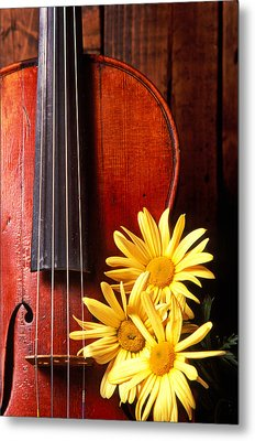 Violin With Daises  Metal Print by Garry Gay