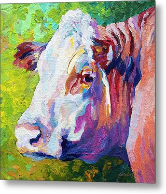 White Face Cow Metal Print by Marion Rose