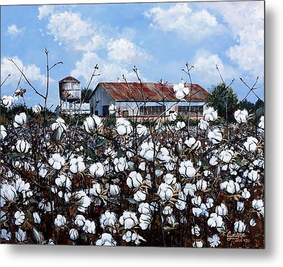 White Harvest Metal Print by Cynara Shelton