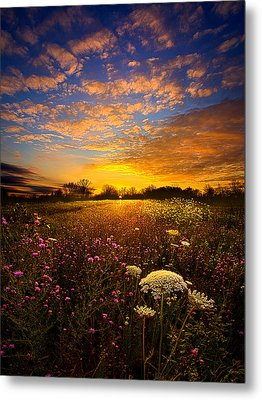 Windsong Metal Print by Phil Koch