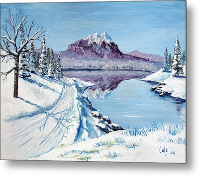 Winter Road Metal Print by Larry Cole